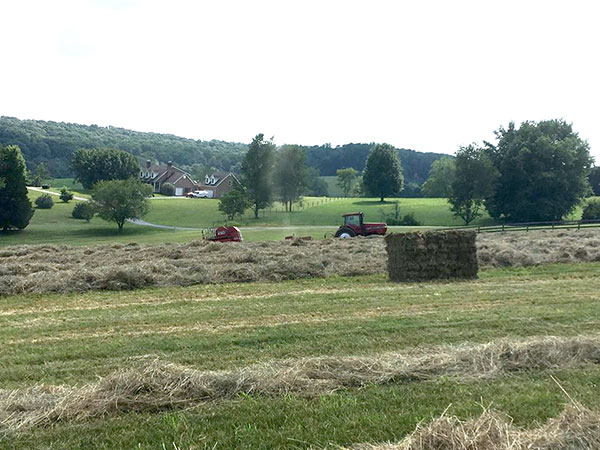the-restoration-farm-600x450-tractors-in-hay-field